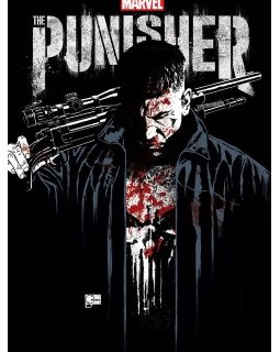 The Punisher est de retour