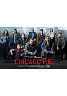 Chicago Police Department saison 2