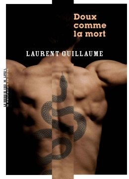 L'interrogatoire de Laurent Guillaume