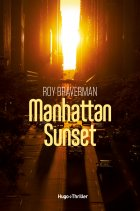 Manhattan Sunset - Roy Braverman