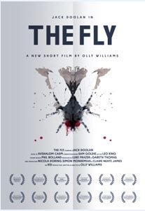 The Fly - Olly Williams